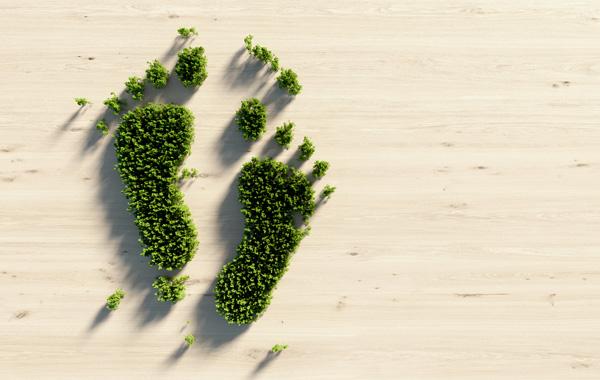 Umweltfreundliche Druckmedien - Grafik Fuesse aus Gras auf hellem Holzpanel