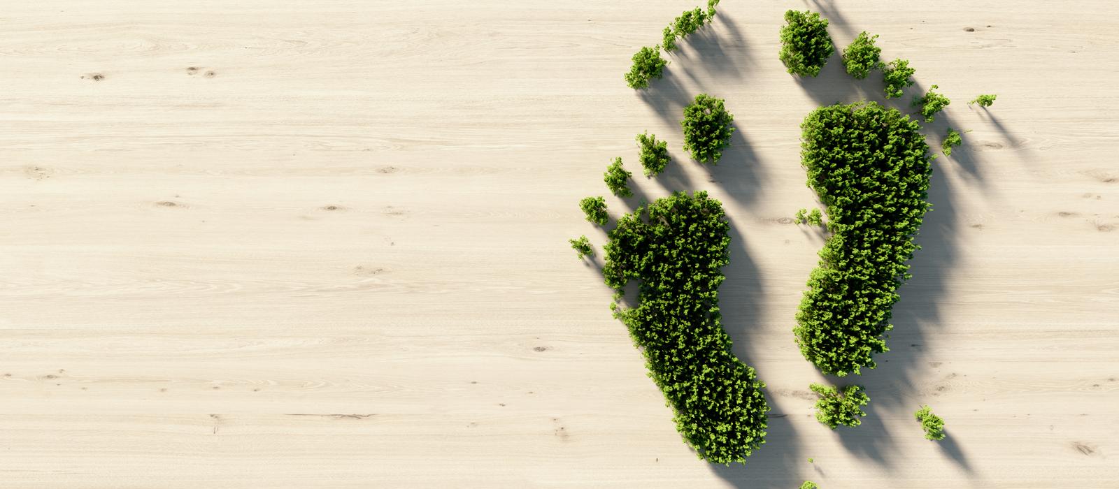 Umweltfreundliche Druckmedien – Grüne Grasfussspuren auf Holzboden