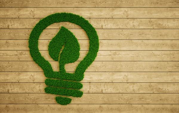 Umweltfreundliche Druckmedien - Grafik Gluehbirne aus Gras auf Holzpanelen