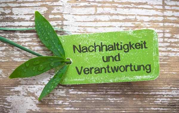 Druckmedien nachhaltig wirtschaften - Grünes Etikett auf Holzbalken